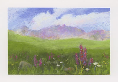 American Basin watercolor note cards