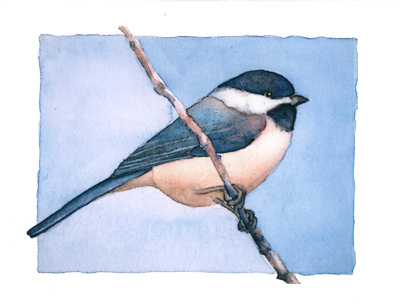 Black-capped Chickadee watercolor note cards