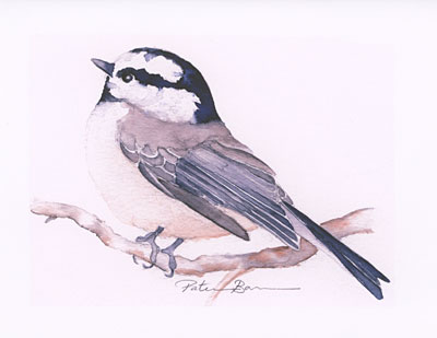 Mountain Chickadee watercolor note cards
